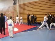 karate_ek_27