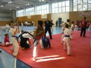 karate_ek_31